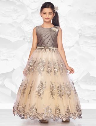 Grey net floor length gown