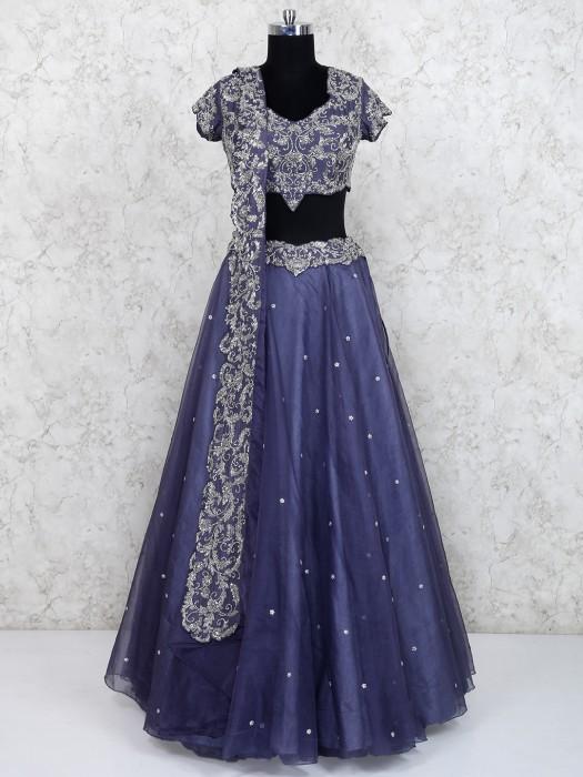 Blue Color Net Party Wear Lehenga Choli