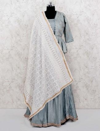 Grey hue cotton silk fabric pretty lehenga choli