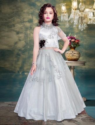 Grey net gloor length gown